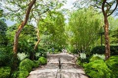 Singapur-Gärten Lizenzfreies Stockfoto
