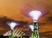 Singapur-Gärten durch die Bucht lizenzfreies stockbild