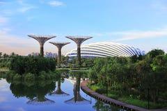 SINGAPUR - JUNIO DE 2014: vista del surco de Supertree en el jardín b Foto de archivo