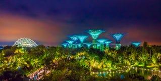 SINGAPUR SINGAPUR, LUTY, - 01, 2018: Piękny futurystyczny widok zadziwiająca iluminacja przy ogródem zatoką wewnątrz Zdjęcie Stock