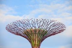 SINGAPUR, MARZEC - 27: Noc widok Supertree gaj przy ogródów b zdjęcie stock