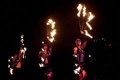 Singapur-Nachtfestival 2014 lizenzfreie stockfotografie