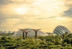 Singapur, Nov - 24, 2018: Widok Supertree punkt zwrotny przy ogr?dem zatok? jest s?awnym parkiem plenerowy Singapur i obraz stock