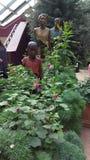 Singapur obywatela Orchidei ogródu statua zdjęcie stock
