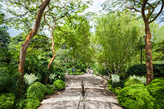Singapur ogródy Zdjęcie Royalty Free