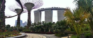 Singapur ogródy i hotel zdjęcia royalty free