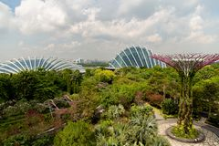 SINGAPUR, SINGAPUR - 26. OKTOBER 2018: Gärten durch die Bucht in Singapur Panoramablick des landschaftlich gestalteten Parks stockfotografie