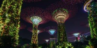 Singapur - 16. Oktober 2018: Panorama von supertrees von Gärten durch die Bucht nachts stockbilder