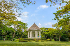 Singapur parks. Park of Singapur in the afternoon Stock Image