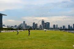 Singapur-Skyline, -Marina Bay Sands und -gärten durch die Bucht Lizenzfreies Stockbild