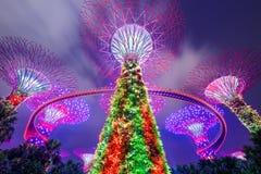 Singapur Super drzewa Obrazy Royalty Free