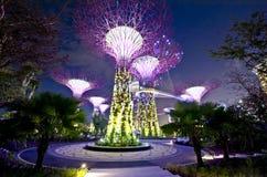 Singapur Supertrees Imagenes de archivo