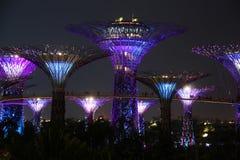 Singapur Supertrees nachts Lizenzfreies Stockfoto