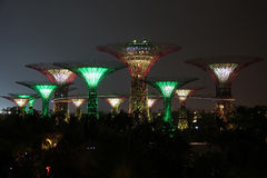 Singapur Supertrees nachts Lizenzfreie Stockfotos