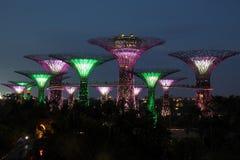 Singapur Supertrees nachts Lizenzfreie Stockbilder