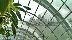 Singapur ulotki Ferris koło  Zdjęcia Royalty Free