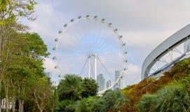 Singapur Widok Ferris koło od Parkowych ogródów zatoką Zdjęcie Stock