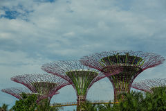 SINGAPURA - 12 DE MAIO: Jardins pela baía o 12 de março de 2014 em Singap Fotos de Stock Royalty Free