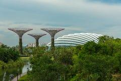 SINGAPURA - 12 DE MAIO: Jardins pela baía o 12 de março de 2014 em Singap Fotos de Stock