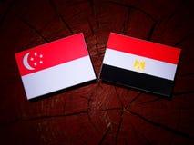 Singapurczyk flaga z egipcjanin flaga na drzewnym fiszorku Obraz Stock