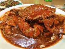Singapurski Chili krab Zdjęcie Stock