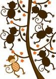 Singe accrochant sur le jeu de forme de silhouette d'arbre Photographie stock