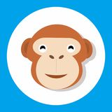 Singe animal Images stock