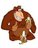 Singe avec une banane Photographie stock libre de droits
