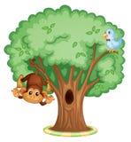 Singe dans un arbre illustration libre de droits