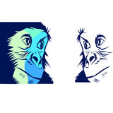 Singe de singe illustration stock