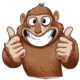 Singe de sourire Photo stock