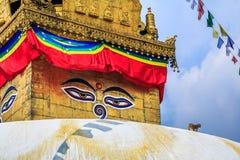 Singe et les yeux de Bouddha Photos stock