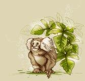Singe et plante tropicale verte Photos libres de droits