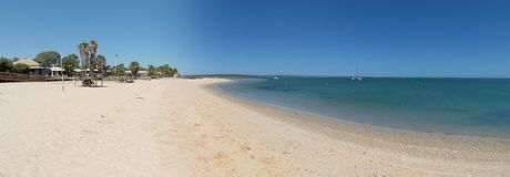 Singe Mia, baie de requin, Australie occidentale Images libres de droits