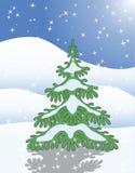 Singelgrantree i vintersnow Royaltyfri Foto