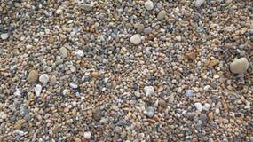 Singelstrand i Dorset Royaltyfri Bild