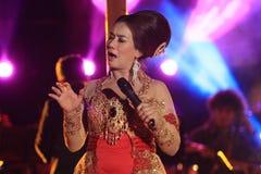 singer Foto de Stock