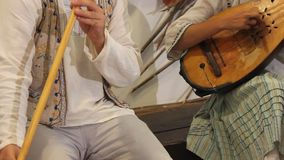 Singer flute and mandolin stock video