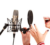 Singer Royalty Free Stock Photos