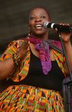 A singer performing at a concert in South Africa Royalty Free Stock Photo