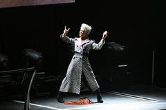 Singer Pink performs onstage Royalty Free Stock Photo