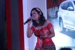 singers Stock Afbeelding