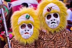 Singes chinois jumeaux Photo libre de droits