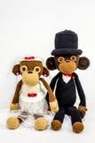 Singes de mariage Images stock