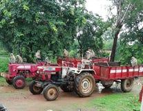 Singes sur le tracteur images libres de droits