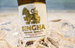 Singha beer on the beach Stock Photos