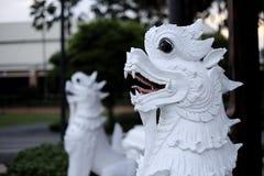 Singha blanco delante del templo tailandés imagen de archivo