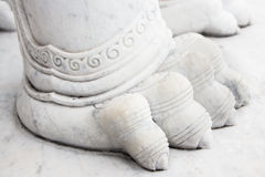 Singha foot Stock Photography