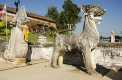 Singha or Lion guardian statues with naga staircase at front of. Gate entrane for people walking go to praying and visit chedi at Wat Phra That Lampang Luang royalty free stock photography