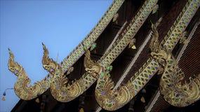 Singha spottar ut ur nagagraden av tempeltaket royaltyfri fotografi